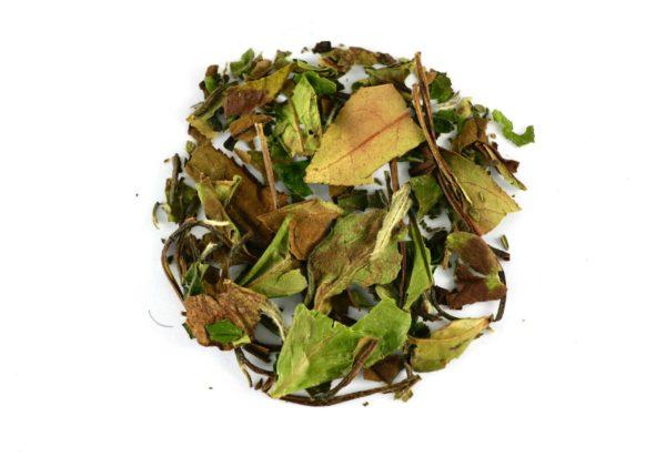 Pai Mu Tan Bio thé blanc du Yunnan