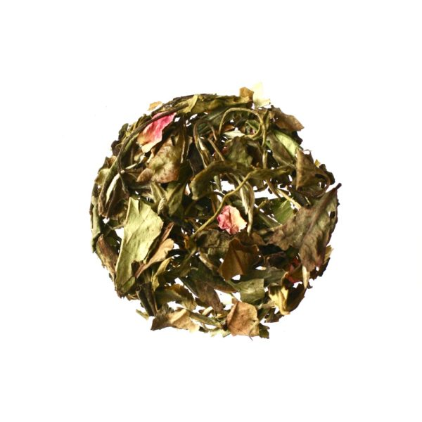 Anthéa - Thé blanc, jasmin et sureau, Bio